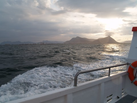Iceland boat trip
